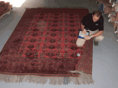 Rug-Cleaning-Inspection